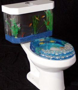 akvariumos