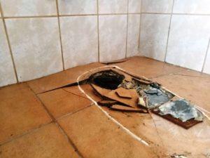 Gyökerek a fürdőszoba alatt.