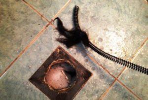 Haj és szőr az összefolyó vezetékben